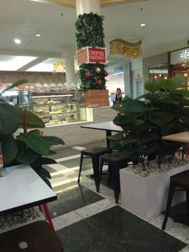New cafe #5: Crema  Espresso in Maroochydore, Sunshine Coast
