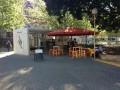 Polly Coffee Bar