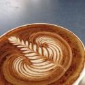Photo of cafe Byron Bay Tennis Cafe taken by Scott Kilpatrick