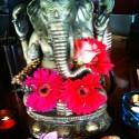 Photo of cafe Talulah taken by Flowerlover