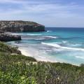 Image for Beach Barista Kangaroo Island