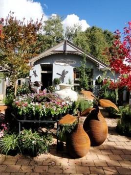 Popular cafe #7: Anything Grows in Orange